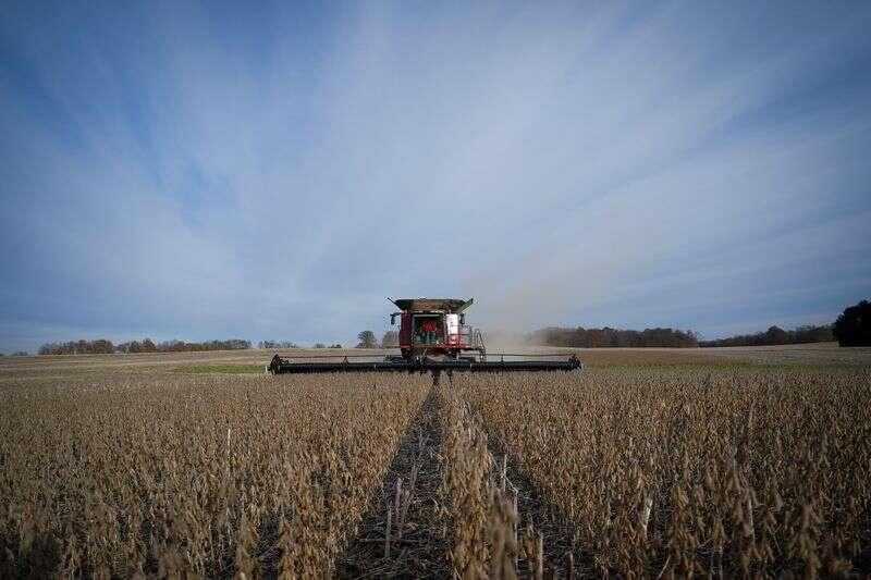 U.S. rolnicy oko zakres dobrych opcji sadzenia po największym wiecu ziarna w latach Reuters